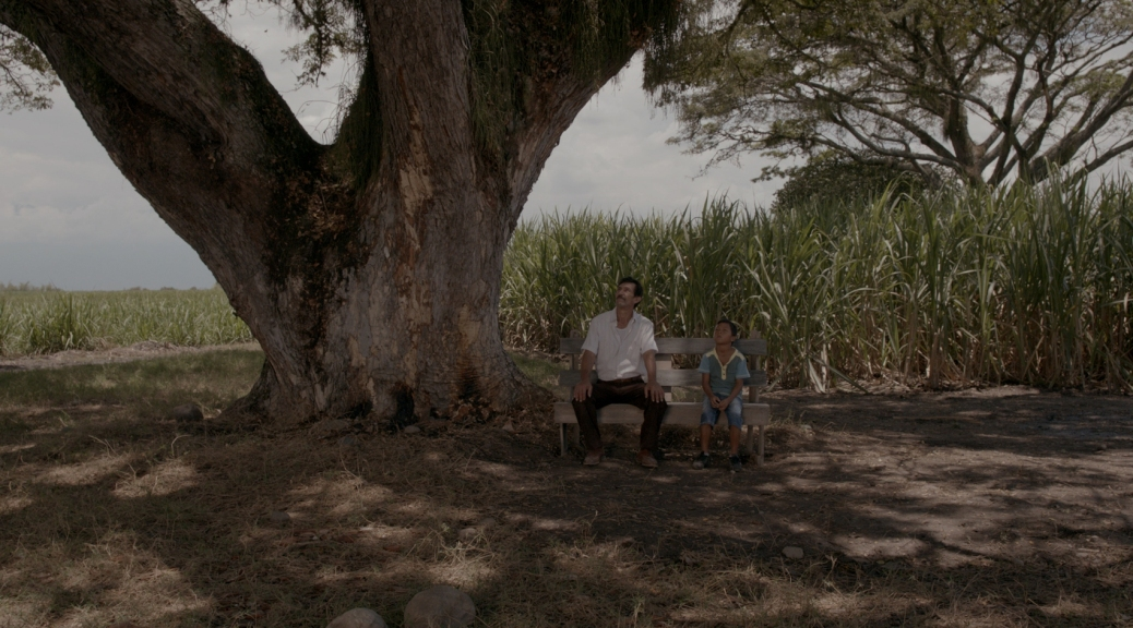 land-and-shade-movie-review-2016-cesar-augusto-acevedo-cannes-film-festival-winner