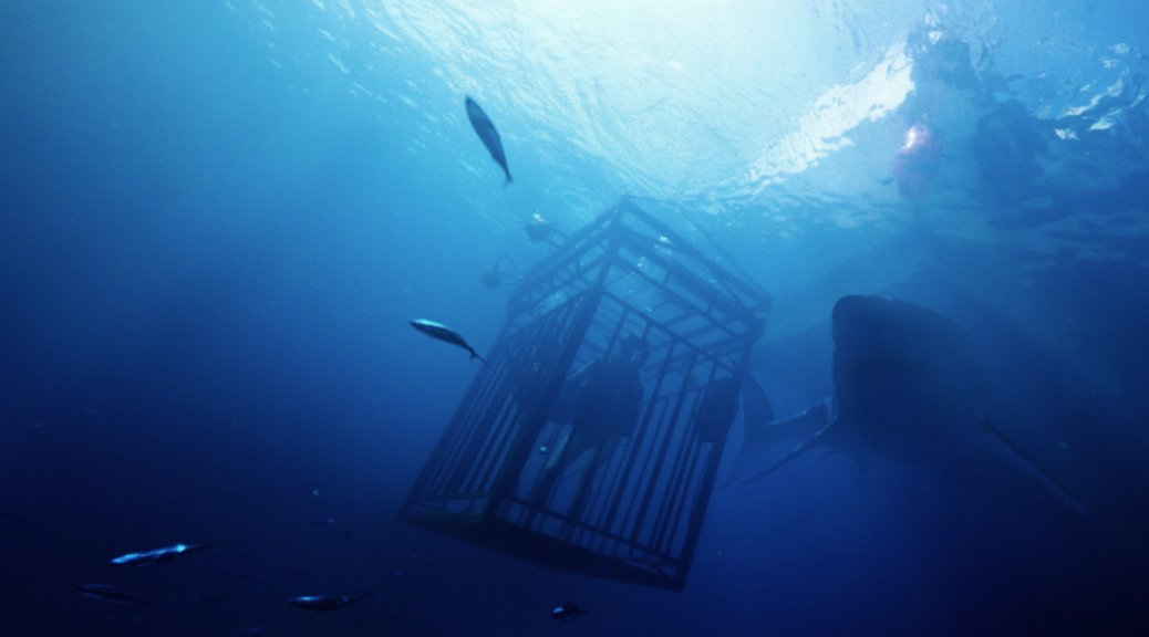 47-meters-down-2017-shark-movie-review-mandy-moore