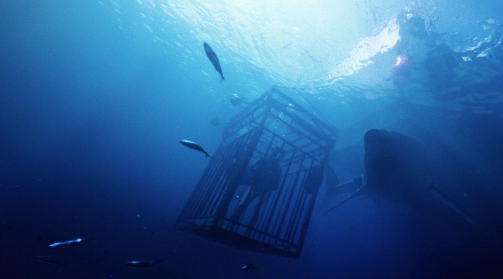 47-meters-down-2017-shark-movie-review-mandy-moore