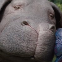 Okja (2017) Movie Review